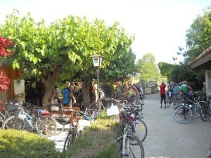 bike hotel willy gemona friuli venezia giulia 7