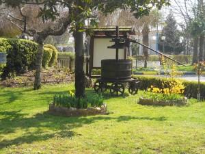 giardino willy gemona 2015 pic3
