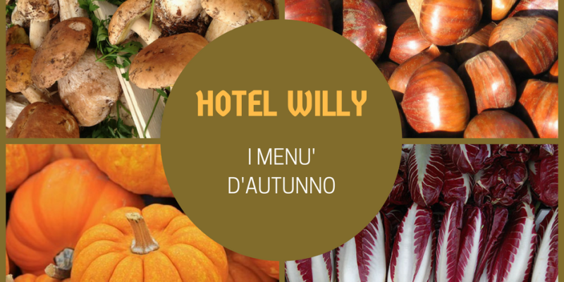 willy-menu-gemona-fvg